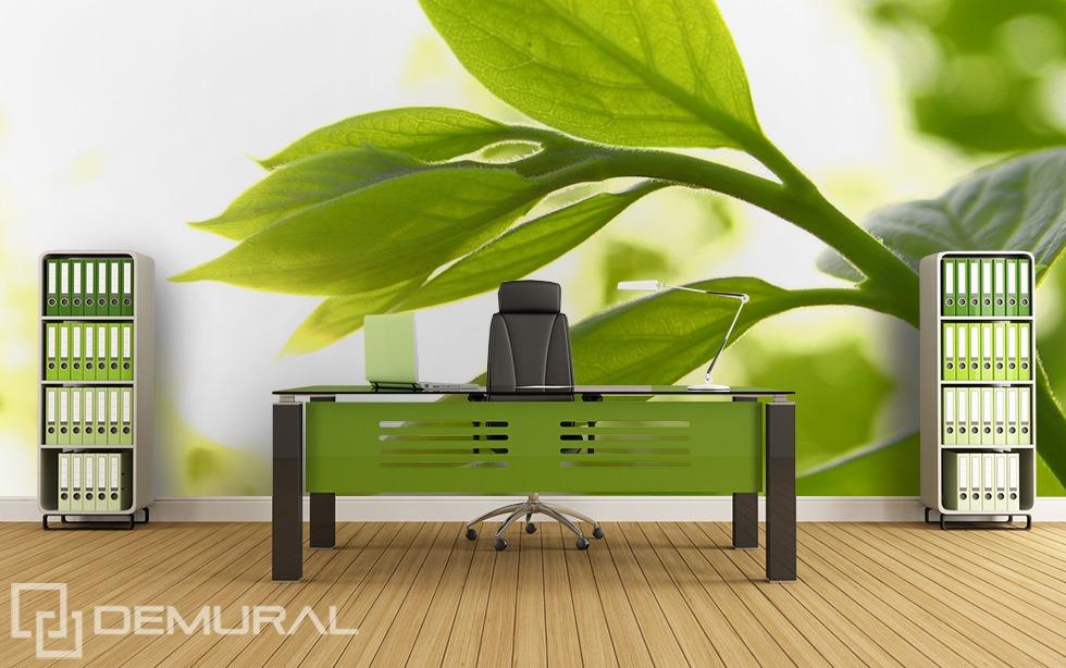 Plant's freshness - Green photo wallpaper