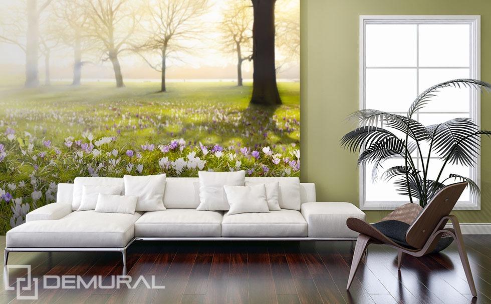 Spring among the grass - Green photo wallpaper