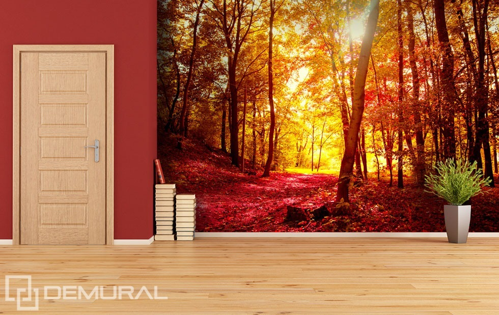 Autumn walk in the forest - Red photo wallpaper