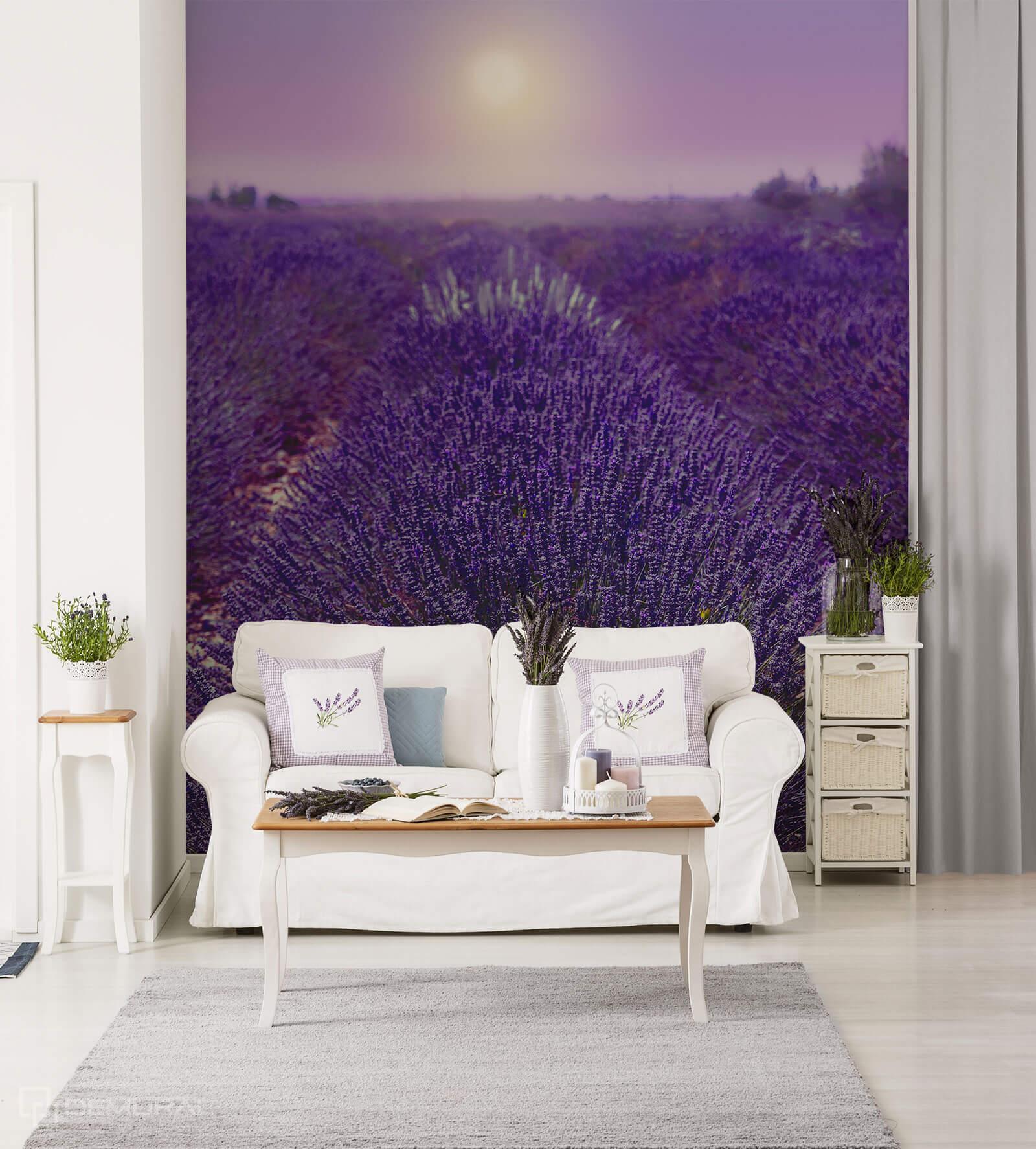 Photo wallpaper Provence fields - Ultraviolet wallpaper - Demural