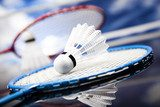 Badminton game - Photo wallpaper