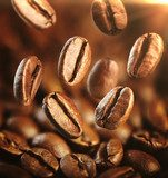 Fresh-roasted coffee Arabica