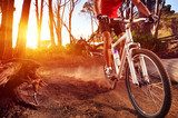 Athletic mountain bike