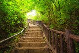 Green stairs, quiet days