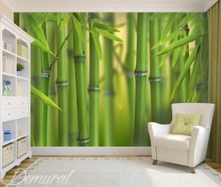 in a subtropical paradise teenagers room wallpaper mural photo wallpapers demural