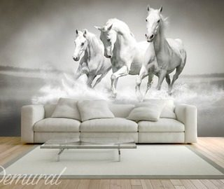 like galloping horses animals wallpaper mural photo wallpapers demural