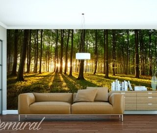 stylization tracks landscapes wallpaper mural photo wallpapers demural
