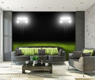 ball in play stadium wallpaper mural photo wallpapers demural