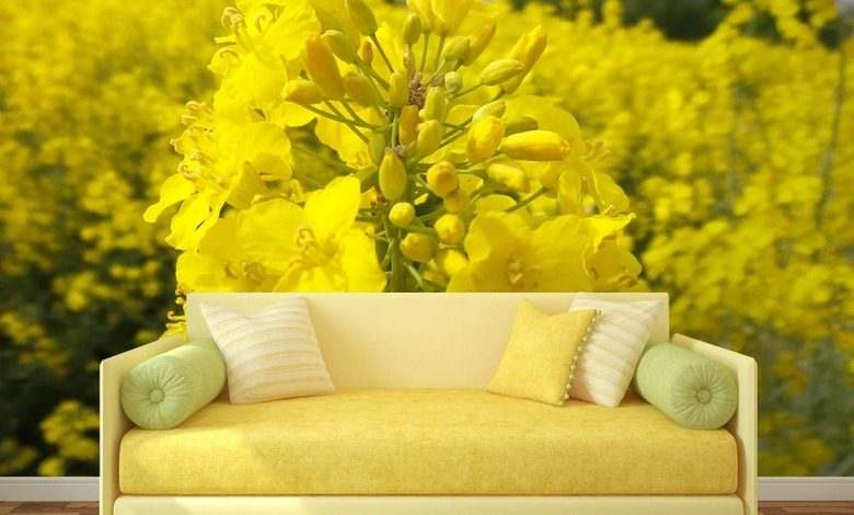 rapeseed field flowers wallpaper mural photo wallpapers demural
