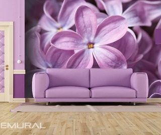 the lilac flower flowers wallpaper mural photo wallpapers demural
