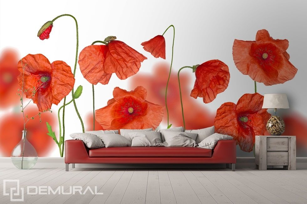 among red poppies poppies wallpaper mural photo wallpapers demural