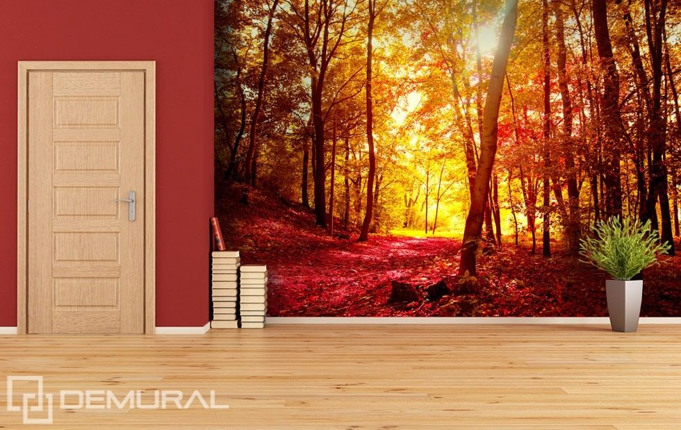Autumn walk in the forest forest wallpaper mural photo for Autumn forest wallpaper mural
