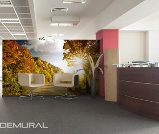 Sunny-alley-wall-murals-and-photo-wallpapers-in-office-photo-wallpapers-demural