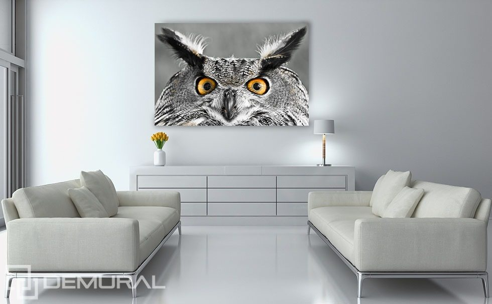 Smart owl's look Canvas prints Animals Canvas prints Demural