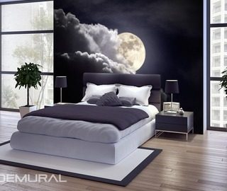 the moon at night bedroom wallpaper mural photo wallpapers demural