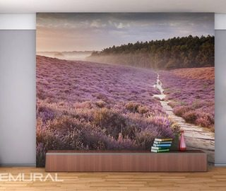 lavender hills provence wallpaper mural photo wallpapers demural