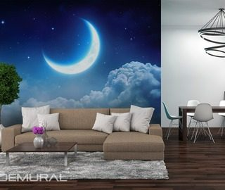 dreaming moon cosmos wallpaper mural photo wallpapers demural