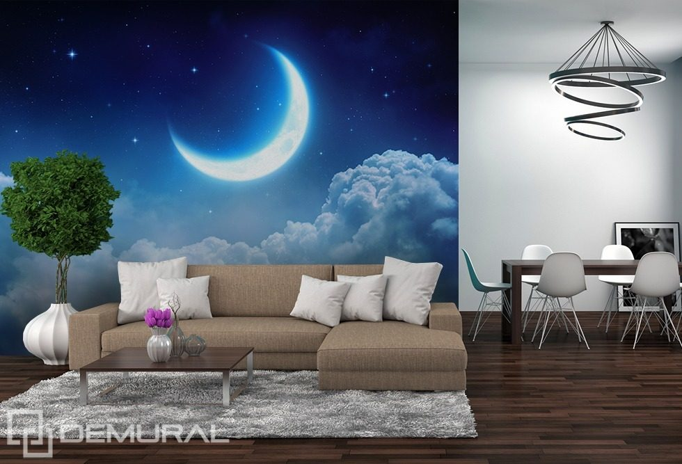 Dreaming moon cosmos wallpaper mural photo wallpapers for Blue moon mural