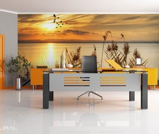 lake fantasies of sunset office wallpaper mural photo wallpapers demural
