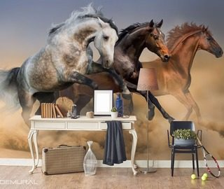 chasing luck trio in canter animals wallpaper mural photo wallpapers demural