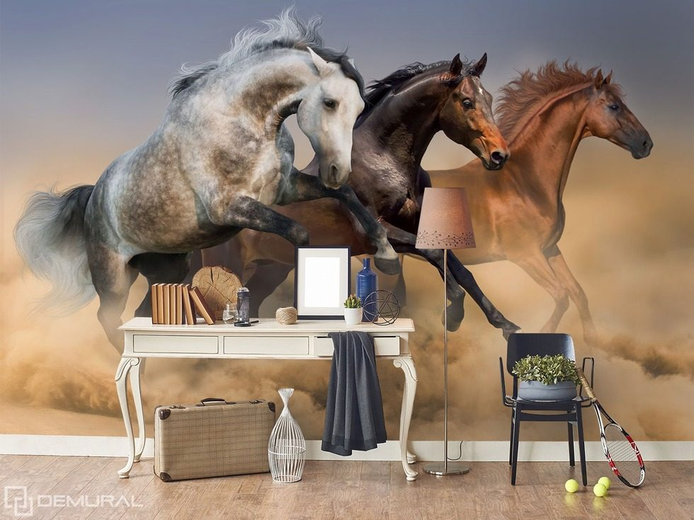 Chasing luck - Trio in canter Animals wallpaper mural Photo wallpapers Demural