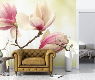 magnolia higher level of sensitivity flowers wallpaper mural photo wallpapers demural