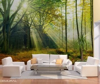 the secret life of light and glare forest wallpaper mural photo wallpapers demural