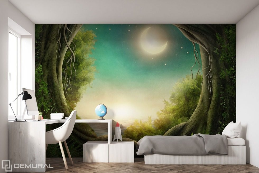 When the world goes to sleep Teenager's room wallpaper, mural Photo wallpapers Demural