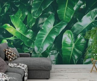 or maybe green patterns wallpaper mural photo wallpapers demural