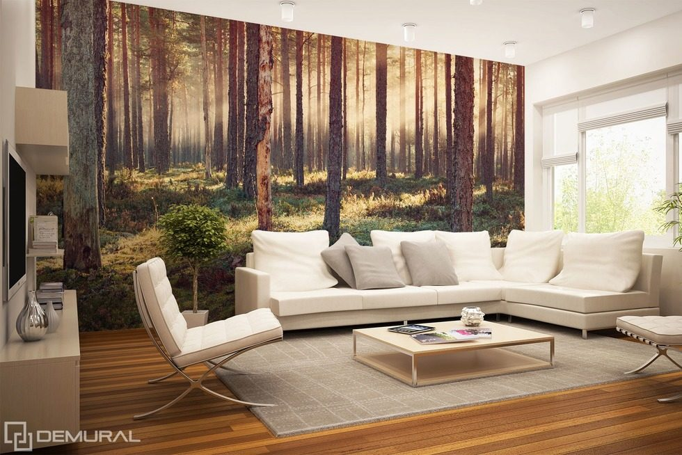 Forest delight Forest wallpaper mural Photo wallpapers Demural