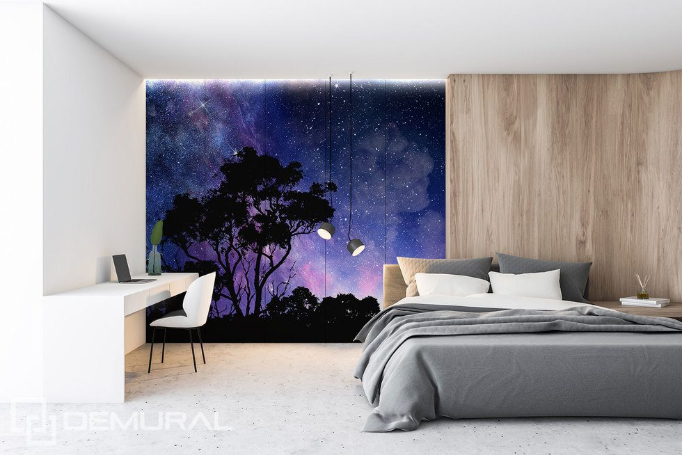 Enjoying the infinite beauty of the world Cosmos wallpaper mural Photo wallpapers Demural