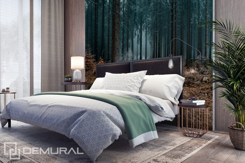 A good night's sleep in the dark forest? Forest wallpaper mural Photo wallpapers Demural