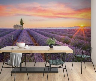 lavender field to the horizon provence wallpaper mural photo wallpapers demural