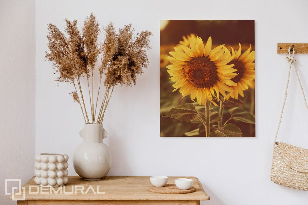 So much sunshine across the room Canvas prints Flowers Canvas prints Demural