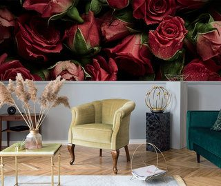 velvet carpet in rose flowers flowers wallpaper mural photo wallpapers demural