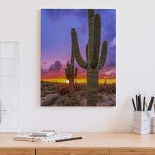 Sunset-over-the-cactus-valley-canvas-prints-in-office-canvas-prints-demural